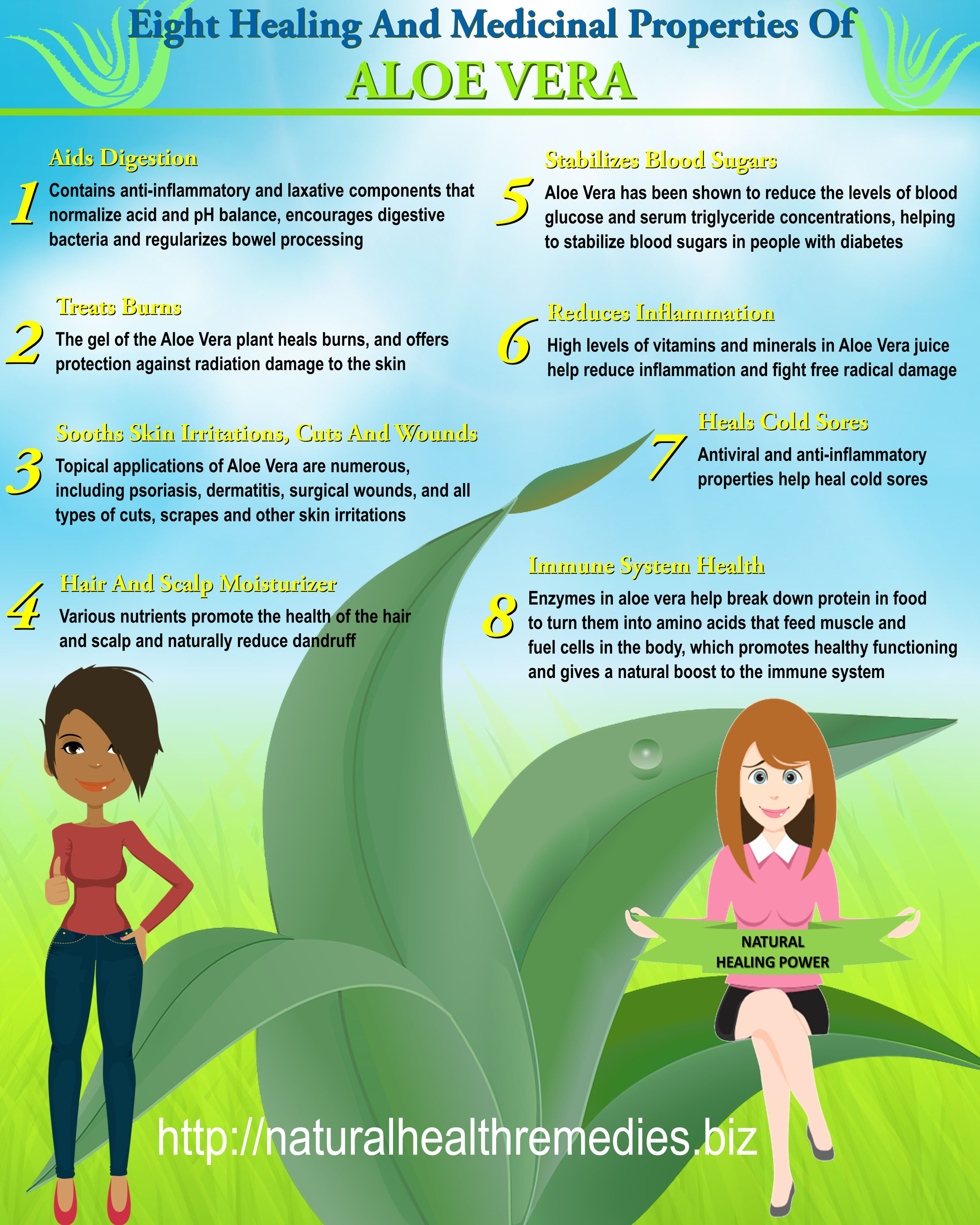 The Healing And Medicinal Properties Of Aloe Vera