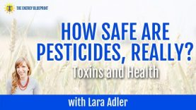 How Safe Are Pesticides and Toxins
